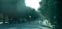 Viale del Galoppatoio inside the Borghese. This was taken from the backseat of a cab so it's not perfect but gives you an idea of life in the Borghese during the day. It's a very large and very cool s